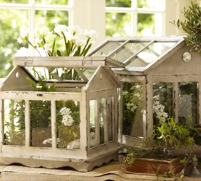 Modern Terrariums by Pottery Barn