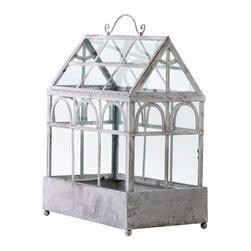 Terrarium Plant Container - Terrarium Plant Container