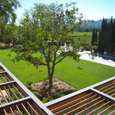 Modern Landscape by Lorin Hill, Architect