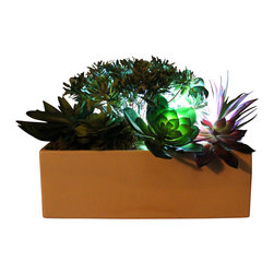 The Firefly Garden - Succulent Garden - Illuminated Floral Design, Large, White Ceramic Planter - Succulent Garden combines gorgeous multi-colored succulents with various floral accents. Featuring a water lily and cymbidium orchid, this piece is perfect for a chic loft or outdoor gathering. Succulents are the latest contemporary floral trend and make beautiful centerpieces for weddings, outdoor gatherings or in a casual dining room.