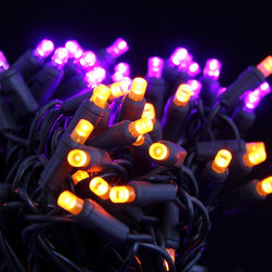 Seasonal Source - 50 Purple and Orange Frosted LED Halloween Lights, 6 Inch Spacing on Black Wire - Halloween is the second largest holiday for decorating, and also the most imaginative. Our selection of pumpkin an witch inspired, Purple and Orange Frosted 5MM lights will brighten up