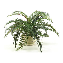 "D&W Silks - Artificial River Fern in Ceramic Planter - It's amazing how much adding a plant can change the look of a room or decor, but it can be difficult if your space is not conducive to growing plants, or if you weren't exactly born with a ""green thumb."" Invite the beauty of nature into your home without all the upkeep with this maintenance-free, allergy-free arrangement of artificial river fern in a ceramic planter. This is not a living plant."