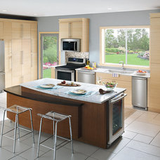 Contemporary Rendering by Electrolux US