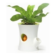 Eclectic Indoor Pots And Planters by Fonq