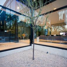 Modern Windows by Bigfoot Door