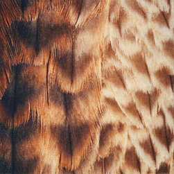 Fine Feathers Flor Tile - Can you believe that's a carpet tile? The close-up image of feathers looks remarkable when lined up together, and the undulating shades and dramatic effect would totally make a room.