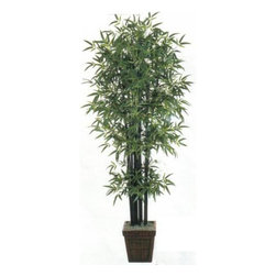 Oriental-Decor - 6' Black Bamboo Tree - This exotic 6 Foot Black Bamboo Artificial Tree will make outstanding decoration in home or office. Bamboo is often associated with Asia and the placement of this tree in any room will provide it with an Asian flair. This artificial bamboo tree consists of 1,657 leaves and 12 trunks. It comes potted in a 13 inch wicker basket with Spanish moss for a truly authentic look. Add a great decorative touch to any space today with this fabulous 6 foot tall tree.