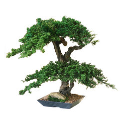 Double Double Monterey Bonsai - The Double Double Monterey Bonsai is consistently one of our most requested artificial bonsai trees. The preserved bonsai is two tiered and finished with permanent rock and preserved moss ground accents.