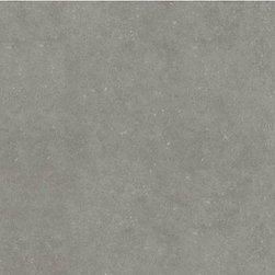 Style Selections Mitte Gray Glazed Porcelain Floor Tile - Price per square foot.