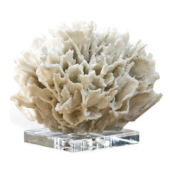 Kathy Kuo Home - Sandestin Coastal Ribbon Coral on Crystal Base, Beach White - Undersea adventures await you with this breathtaking sculpture. Perched on a lovely crystal base, this sculpture captures all the glittering beauty of pure white coral. When placed over the mantel, it will easily become the focal point of your seaside escape.