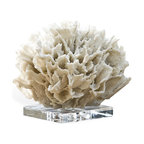 Kathy Kuo Home - Sandestin Coastal Beach White Ribbon Coral on Crystal Base - Undersea adventures await you with this breathtaking sculpture. Perched on a lovely crystal base, this sculpture captures all the glittering beauty of pure white coral. When placed over the mantel, it will easily become the focal point of your seaside escape.