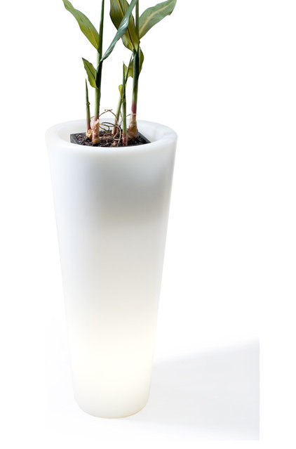 Modern Indoor Pots And Planters by 2Modern