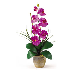 """Nearly Natural - Nearly Natural Single Stem Phalaenopsis Silk Orchid Arrangement in Orchid - Bursting with color and personality the Phalaenopsis is perhaps the most popular variety of all the Orchids. Six lively blooms and two buds are complimented by genuine bamboo, which enhances the Silk plant's authenticity. Featuring nearly natural leaves, moss and roots, this familiar favorite is sure to charm the masses. Color: Orchid, Height: 21"""", vase: H 4-1/4"""" W 5-1/4"""""""