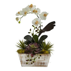 Orchid and Succulent Garden with White Wash Planter - This combination is simply breathtaking. Picture a beautiful Orchid, it's slim stem gently curving, giving way to soft blooms. Now imagine a base of multihued succulents of varying shapes and textures. Now put all of this together in a beautiful whitewash planter, and you have a real winner. Best of all, it'll stay beautiful year after year, with nary a drop of water. This beauty will brighten any decor, home or office, and is the ideal gift for that hard to buy for person. Height= 21 In. x Width= 13 In. x Depth= 10 In.
