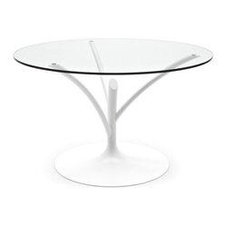 Calligaris | Acacia 140 Dining Table