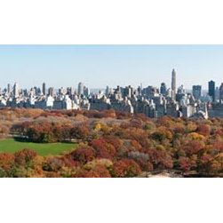 Murals Your Way - Central Park - Panorama 1 Wall Art - Photographed by Richard Silver, Central Park - Panorama 1 wall mural from Murals Your Way will add a distinctive touch to any room