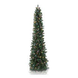 "Balsam Hill - 7' Balsam Hill® Sonoma Slim Pencil Pre-Lit Artificial Christmas Tree - Our 7 foot pre-lit Sonoma Slim Artificial Christmas tree derives its name from the spectacular scenery of Northern California's post card-worthy wine country. This tree is the ideal accent for foyers, entryways and corners. As an easy setup tree, the Sonoma Slim will sparkle and dazzle with its Clear warm glow lights. Included with this tree is a scratch-proof tree stand, soft cotton gloves for shaping the tree, and off-season storage bags. As the best artificial Christmas tree manufacturer that is the #1 choice for set designers for TV shows such as ""Ellen"" and ""The Today Show"", in addition to being a recipient of the Good Housekeeping Seal of Approval, our trees are backed by a 10-year foliage warranty and a 3-year light warranty. Free shipping when you buy today!"