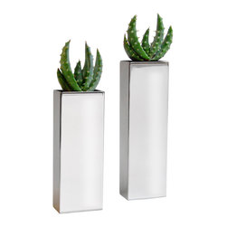 LushModern - 2 Chrome Pillar Vases with Aloe Flames - Not your Grandmother's candlesticks—these sleek, modern accents will lighten up your mood! Brilliant, reflective surfaces contrast these hardy cacti for a unique look.