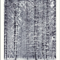 Amanti Art - Pine Forest in the Snow, Yosemite National Park Framed Print by Ansel Adams - No one captured the splendor of nature quite like the late, great Ansel Adams.  Here, a forest of snow-laden boughs makes a breathtaking black and white statement in your decor.