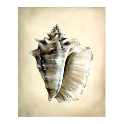 Seashells II Unframed Giclee with Crackle Finish - Soft, active lines define the textures of the spiny conch depicted in Seashells II: quick strokes to outline the details of the specimen in bold dark points, gentle radiance where the light caresses the pearly inner surface.  This portrait of a seaside treasure is a sophisticated neutral study that looks restrained and upscale in high-end interiors but isn't too ornamented for a casual space.