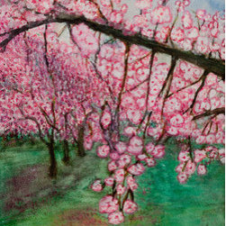 Branches With Cherry Blossoms (Original) by Ana Is De La Vega - I love to see these trees in the spring.