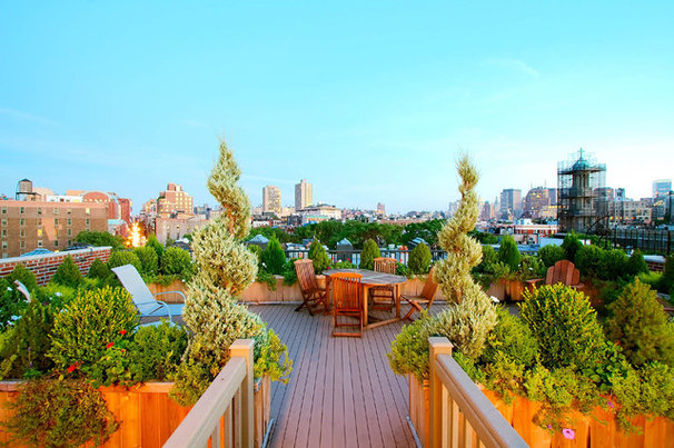 Traditional Deck by Amber Freda NYC Garden Design