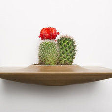 modern indoor pots and planters by domenicfiorello.com
