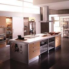 Modern Kitchen by European Cabinets & Design Studios