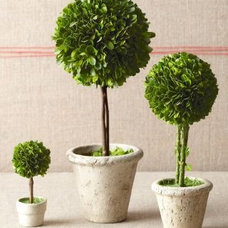 Contemporary Artificial Flowers Plants And Trees by Garnet Hill