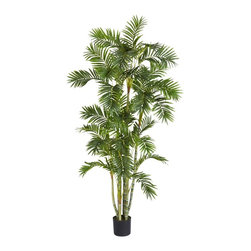 Nearly Natural - 6 ft. Areca Palm Silk Tree - A realistic looking Areca Palm Tree. Intricately designed segmented trunks. Lush leaves that flow out in all directions.. Construction Material: Polyester material, plastic, Iron. 32 in. W x 32 in. D x 72 in. H ( 17 lbs. ). Pot Size: 6.75 in. W x 5.75 in.HStanding tall at 72 inches high (6 feet) this realistic looking Areca Palm Tree could hide among its tropic siblings with nobody being the wiser. Several intricately designed segmented trunks reach up high into the sky to hold out 33 lush leaves flowing out in different directions. The long foliage creates interesting patterns sure to draw anyone's attention. Comes with pot and faux soil to complete the look.