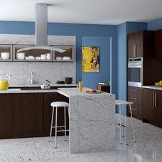 Modern Kitchen Cabinetry by StockCabinetExpress