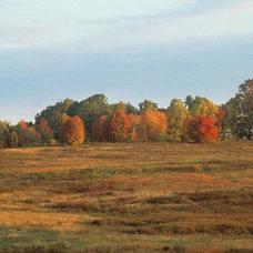 Landscape by Longwood Gardens