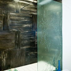 Contemporary Shower Stalls And Kits by Float Glass Design