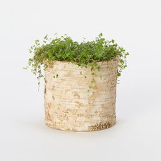 Eclectic Outdoor Pots And Planters by Terrain