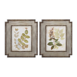 Uttermost - Natures Collage Floral Art Set of 2 - Start your own collection of botanicals with this set of oil reproductions. They are finished by hand so you can see the brushstrokes and the unusual frames are distressed in brown and dark taupe.