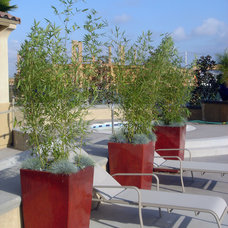 Eclectic Outdoor Planters by cultivate landscape design