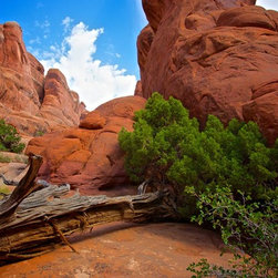 Murals Your Way - Fiery Furnace Wall Art - Photographed by Doug Nelson, Fiery Furnace wall mural from Murals Your Way will add a distinctive touch to any room