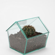 Contemporary Indoor Pots And Planters by Urban Outfitters