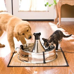 Drinkwell 360 Stainless Steel Pet Fountain - Puppies and kittens can find common ground at this drinking fountain that gives them fresh water at all times.