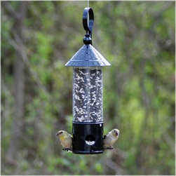 Avant Garden North Star Bird Feeder - The Avant Garden North Star Bird Feeder has a versatile and timeless design that is sure to impress houseguests and feathered friends alike. Inspired by the look of colonial lanterns this timeless avian feeder has a .85 lb. seed capacity and four feeding stations. Hang a little piece of history in your yard porch patio or deck.About WoodstreamA privately held company with a long-standing positive reputation Woodstream is a global manufacturer and marketer of quality products from pets and wildlife control and home and garden products to bird feeders and garden decor. They have a 150-year history of excellence growth and innovation and have built a strong presence in key markets through organic growth and strategic acquisitions. The growth of Woodstream is thanks to their customer-driven approach to product development a dedicated design organization that focuses on innovation quality and safety as well as a commitment to an industry-leading level of service.