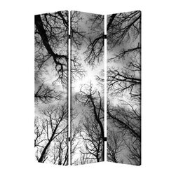 Forest Screen - Create a sense of intimacy in your open space with this three-panel, dual-image screen. Dramatic, bare tree limbs against the sky bring the awesome beauty of nature into your decor.