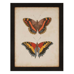 Paragon - Antique Butterfly IV - Framed Art - Each product is custom made upon order so there might be small variations from the picture displayed. No two pieces are exactly alike.