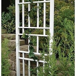 Dura-Trel Wellington 6.25-ft. Vinyl Wall Trellis - White - Show your decorating style. Three distinctive areas of this trellis make for an attractive addition to your garden. Even unadorned with plants the Dura-Trel Wellington 6.25-ft. Vinyl Wall Trellis - White is an elegant element of your landscaping. Use two three or more to create a gorgeous border on your property. This trellis is made from tough and durable PVC vinyl that has a 20-year warranty. Virtually maintenance-free all you need to do is remove old growth and rinse it off when needed. Put a decorator's touch in your garden or patio with the Wellington Trellis. About Dura-Trel Inc.Durability versatility reliability and quality. These are the cornerstones of Dura-Trel's commitment to you. Our lawn and garden selections are an unbeatable and maintenance-free enhancement that can help transform the outdoors from average to outstanding. As you would expect from a national corporation with over 25 years of experience like ours we offer competitive pricing and quick delivery. But we also have something our competitors don't - a custom production process that blends the efficiency of large-scale manufacturing with the time-honored qualities of hand-crafting traditions.