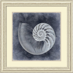 Amanti Art - Caroline Kelly 'Ocean Blue IV' Framed Art Print 29 x 29-inch - The seashell photography of Caroline Kelly depicts an adoration for the patterns and designs crafted by mother nature herself; share your appreciation for these seaside treasures by adding this framed artwork to your decor.