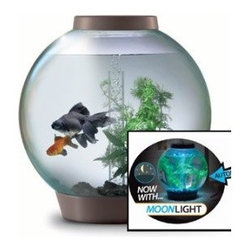 """Baby BiOrb Four-Gallon Moonlight Aquarium with Light Fixture - Is there life out there? Sure, it's in this space helmet-shaped aquarium! And, at night, it automatically emits a soft blue """"moonlight"""" glow."""