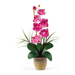 """Single Stem Phalaenopsis Silk Orchid Arrangement - Bursting with color and personality the Phalaenopsis is perhaps the most popular variety of all the orchids. Six lively blooms and two buds are complimented by genuine bamboo, which enhances the silk plant's authenticity. Featuring nearly natural leaves, moss and roots, this familiar favorite is sure to charm the masses. Color: Dark Pink, Height: 21"""", Vase: H 4-1/4"""" W 5-1/4"""" Height= 21 in x Width= 9 in x Depth= 6 in"""