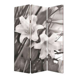 Lily Screen - You can see both sides now. Fortunately, your decisions on which side to favor can change easily, at a moments notice. This lightweight screen features two spectacular nature photos rendered classic in black and white, which means it will get along amiably with whatever color scheme you have.