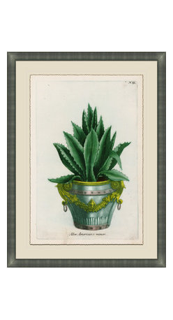 Soicher-Marin - Small Planters B - Giclee Print with a silver contemporary wood frame.  Print mounted on posterboard then floated on an off white mat.  Includes glass, eyes and wire. Made in the USA. Wipe down with damp cloth