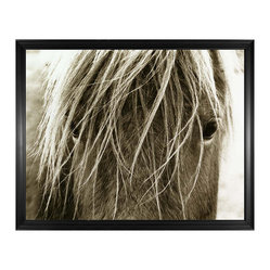Blonde Horse Photo Wall Art, Framed
