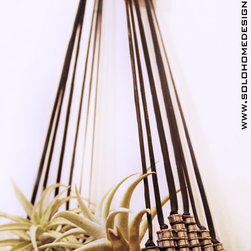 Air Plant Hangers - One of a kind air plant hanger made completely of recycled bicycle parts. Two airplants included.